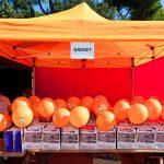 Mini Fondo Roma 2016